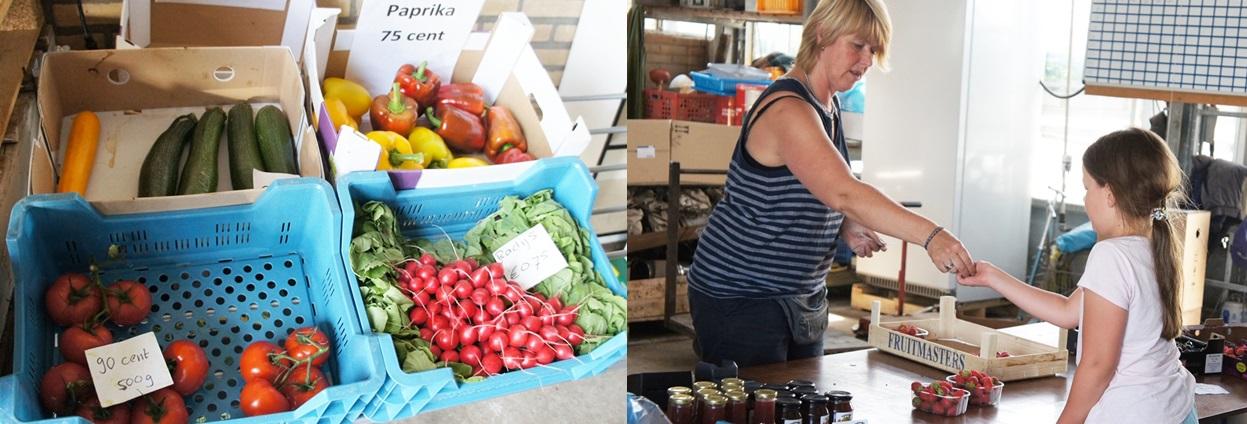 농장에서 판매중인 다양한 수확물(왼쪽)과 딸기를 구입하고 있는 아이.
