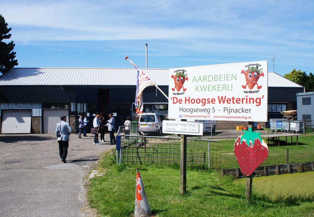 농장 앞에 설치된 Hoogsewetering 간판이 우리를 환영하고 있다.