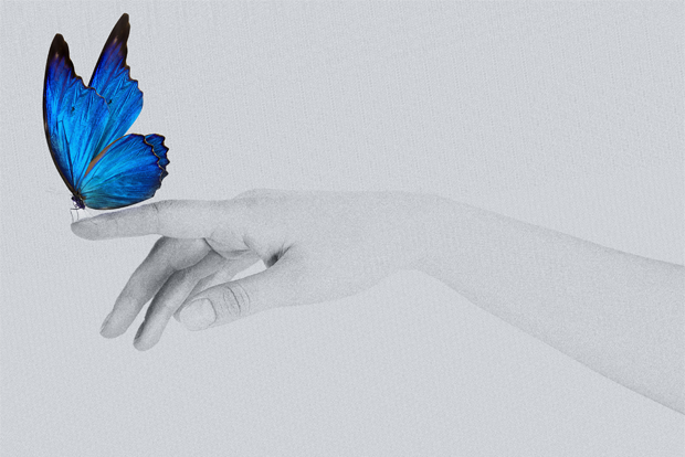 파란 나비를 손에서 놓아주고 있는 모습