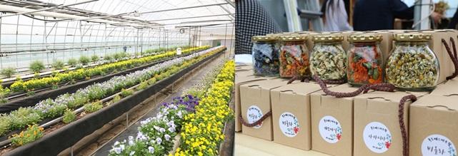 푸르메스마트팜 서울농원에서 재배한 꽃과 이를 가공해 만든 꽃차
