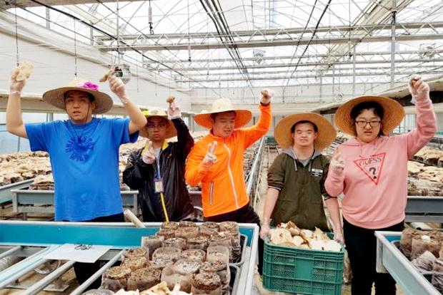 두 부부가 운영해온 농장에서 친환경 표고버섯 수확의 기쁨을 체험했던 장애청년들