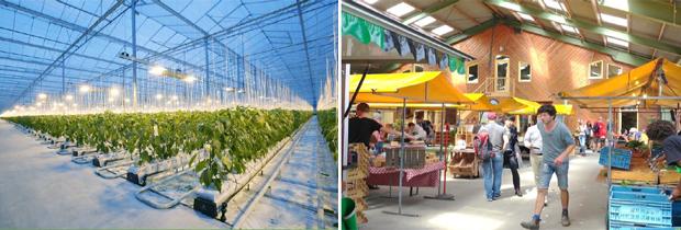 첨단 기술을 접목한 대형 유리온실과 장애청년의 농산품을 판매할 주말 마켓 (푸르메재단 DB)