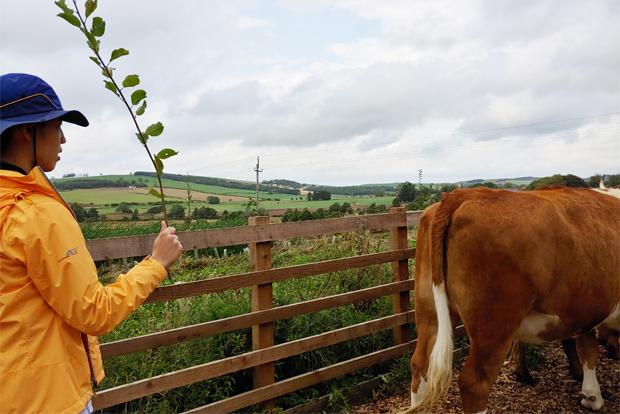 민준이는 캠프힐에서 소를 돌보고 작물을 수확하며 자연이 주는 기쁨과 일의 보람을 만끽했다. (고경미 씨 제공)