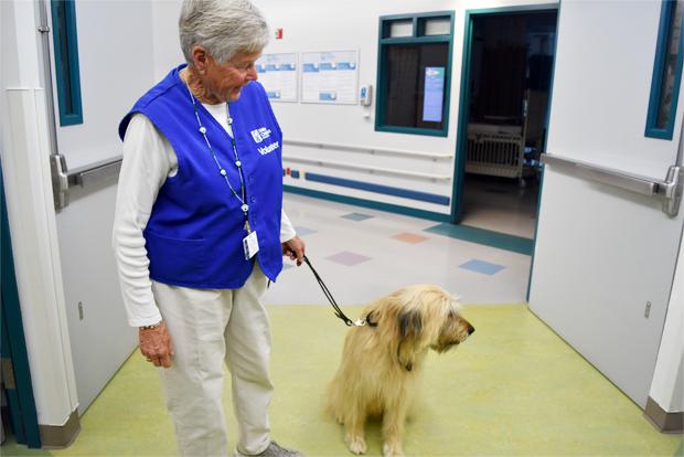 입원 어린이를 위해 '찾아가는 동물서비스'를 제공하는 자원 봉사자와 개